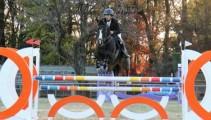東京オリンピック馬術競技会場のJRA馬事公苑「ジャパンブリーディングホースショー」に参加しました!