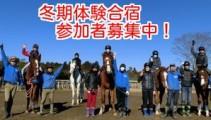 【3泊4日 冬期合宿】馬の学校が体験できる!体験合宿参加申し込み受付中!