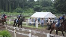 馬の学校の授業参観日!多くの親御さんたちが来校し授業訓練を見て頂きました!