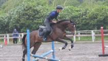 新馬の馬術競技会デビューも!第12回 親睦馬術大会が行われました!