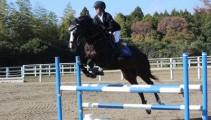 生徒全員が出場! 第11回 親睦馬術大会 & 乗馬技能認定試験 が行われました!