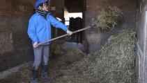 ワラ馬房掃除実習と調教鞍での騎乗がスタート!夢に近付くための一歩に(^O^)