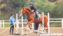 週末の騎乗レッスン 学年合同で☆障害飛越練習