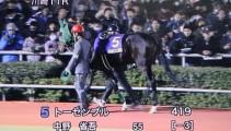 トーセンブルが『全日本2歳優駿(G1)』に出走!!