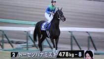 『中山大障害 J・GⅠ』に本校育成馬「トーセンハナミズキ」が出走!!