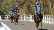 本校特別講師 JRA 田中博康 調教師による走路騎乗&木馬授業が行われました!