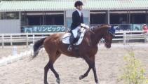 今年度最初の競技会「第47回千葉県馬術大会part1」に出場しました!!