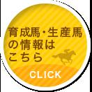 育成馬・生産馬の情報はこちら