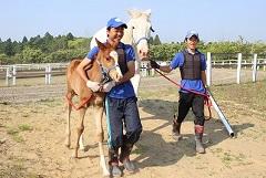 授業で出産や仔馬の世話も(写真)