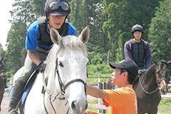 自分がやりたい、自分にあった馬の仕事が見つかる!(写真)