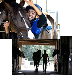 馬の活躍が大きなやりがいに(写真)