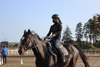 乗馬実技試験