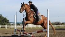主催競技会、乗馬技能認定試験に向けて練習中!&新しい先生を紹介