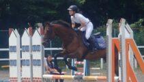 4カ月ぶりの馬術競技会遠征へ シゲルジャンボイモ&ストロングロビン